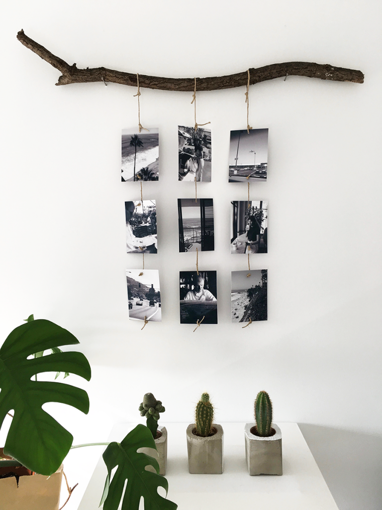 DIY mit neun Fotos an einem Ast.