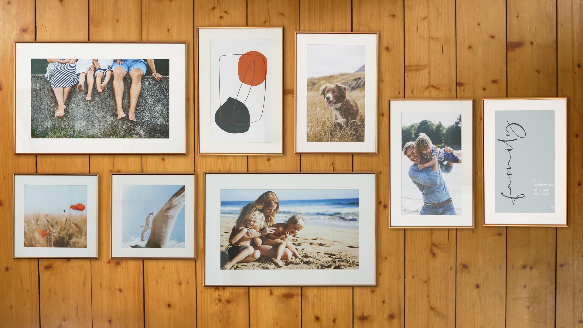 Acht Bilder liegen in einer harmonischen Anordnung auf dem Boden
