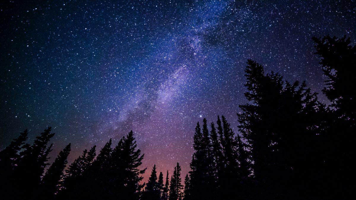 Der Sternenhimmel über einem Wald