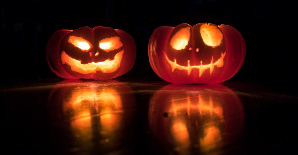 Die geschnitzen Kürbisse lassen echte Halloween-Stimmung aufkommen